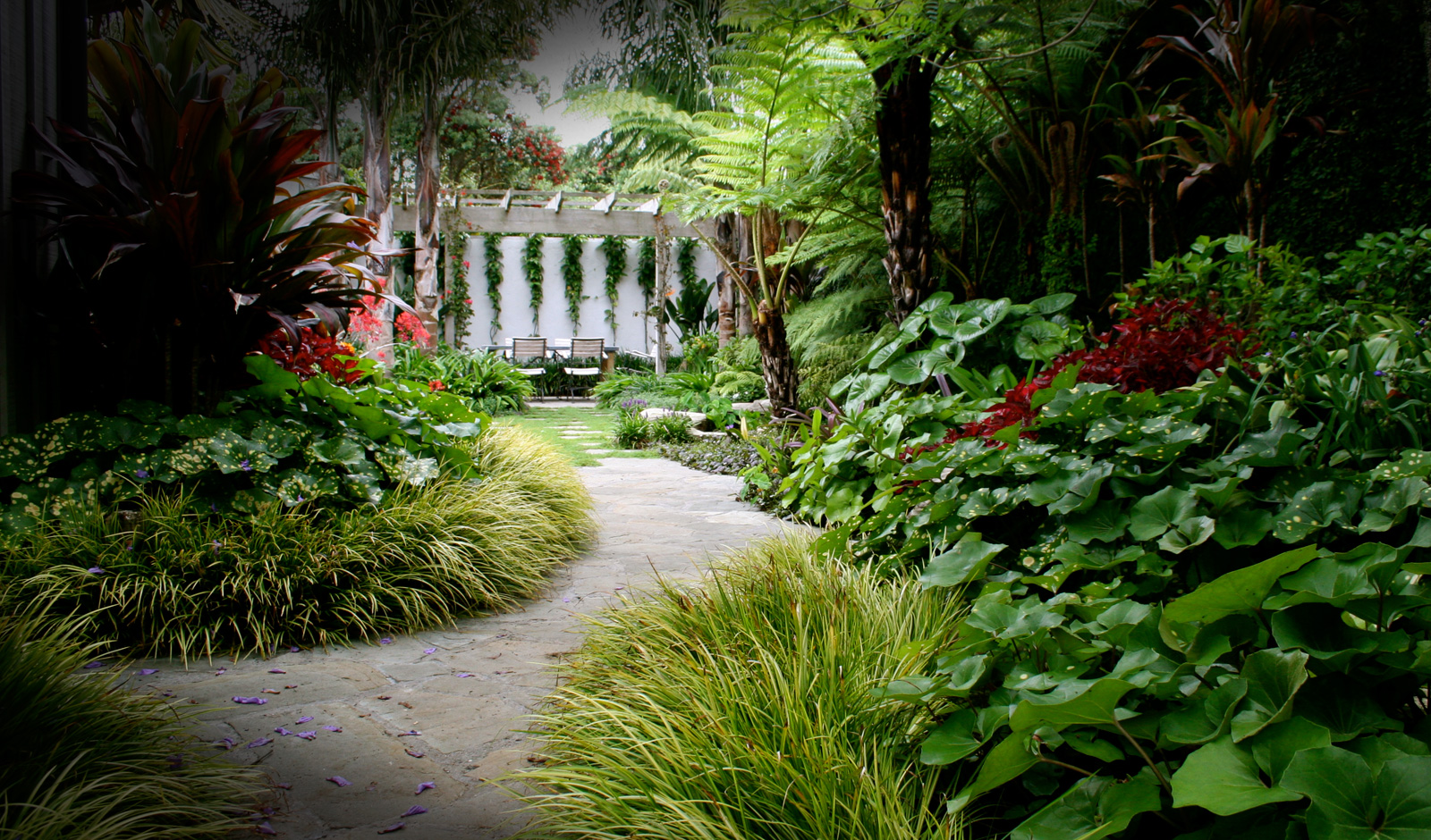 kauri cliffs owners cottage landscaping by hawthorn landscapes
