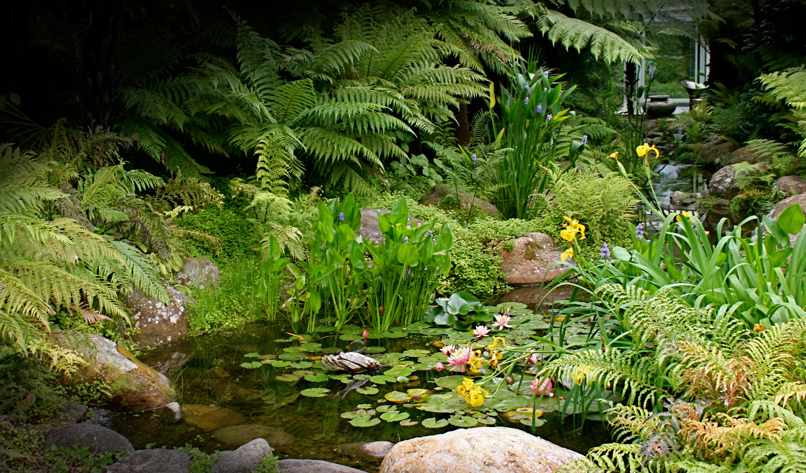 The Lodge at Kauri Cliffs Spa - Landscaping by Hawthorn Landscapes