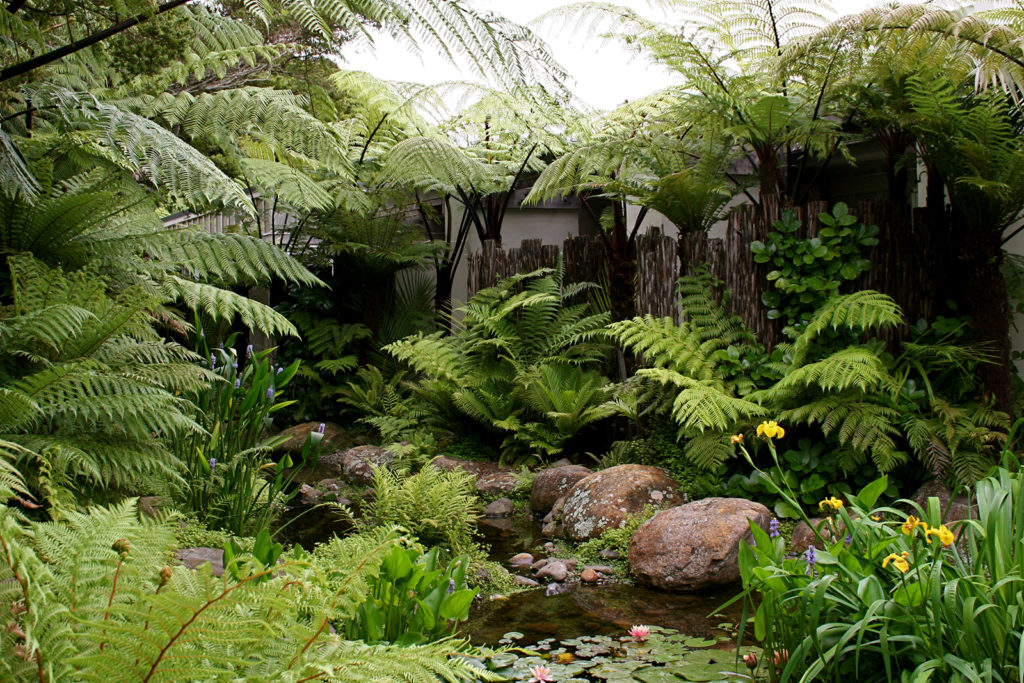 Kauri Cliffs Spa lush subtropical plantings and ponga fence