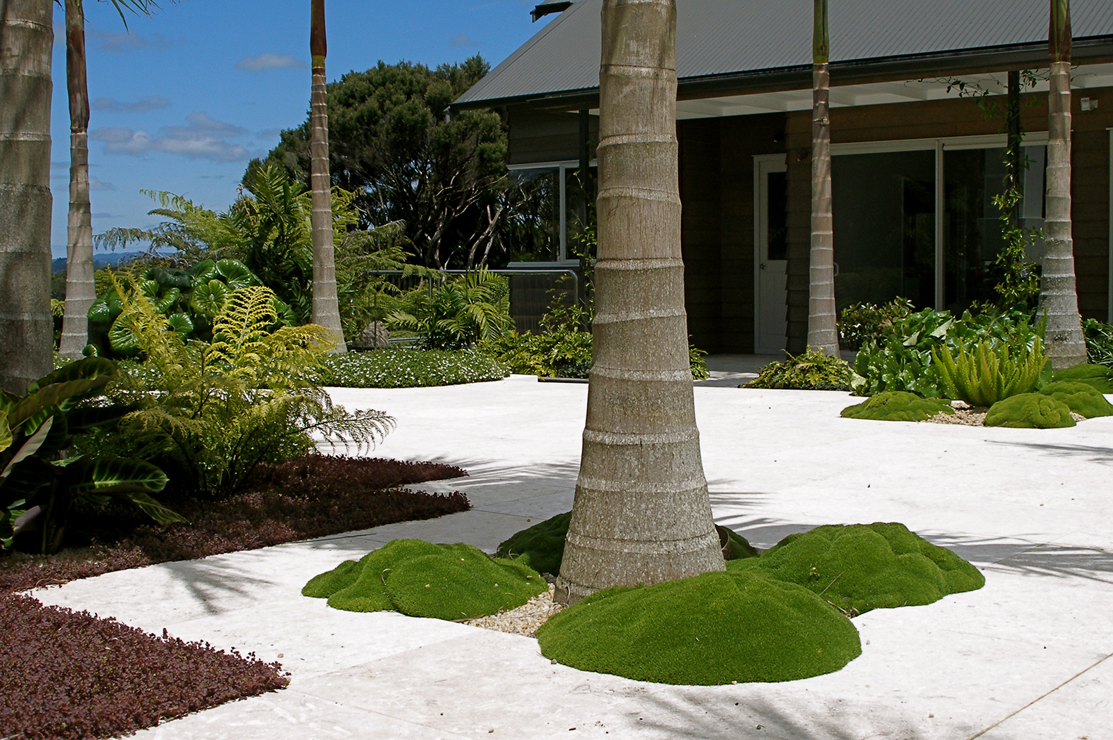 Courtyard landscaping by Hawthorn Landscape Architects