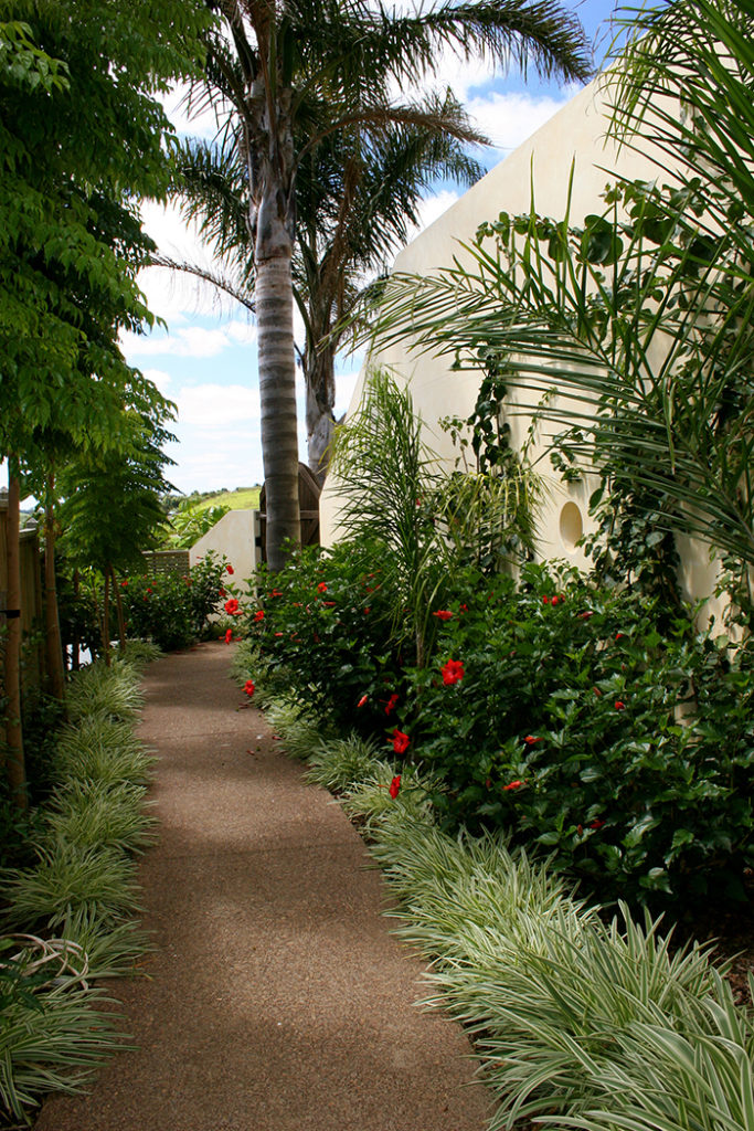 subtropical plantings