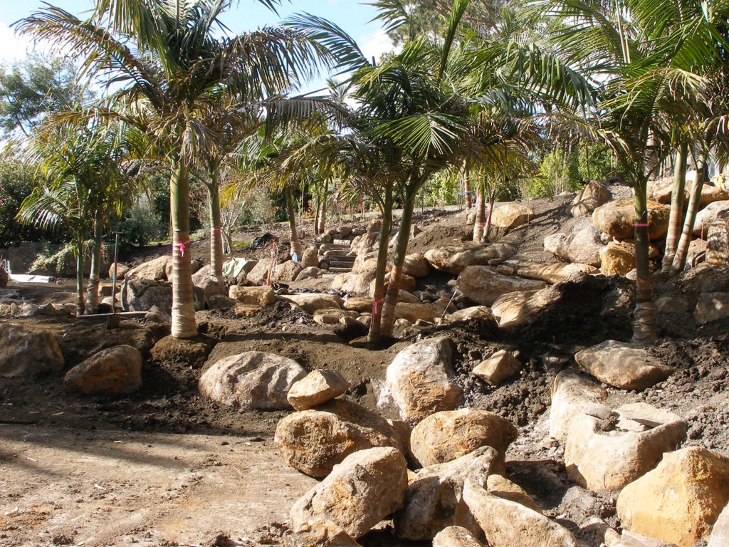large rocks used in new subtropical garden in northland - design by hawthorn landscapes