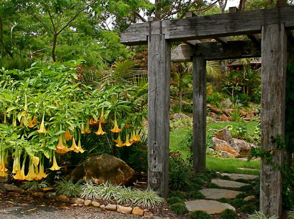 Garden design by christine hawthorn of hawthorn landscapes kerikeri