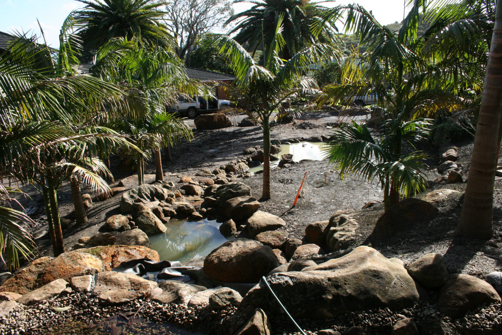 new ponds and rocks in subtropical garden northland
