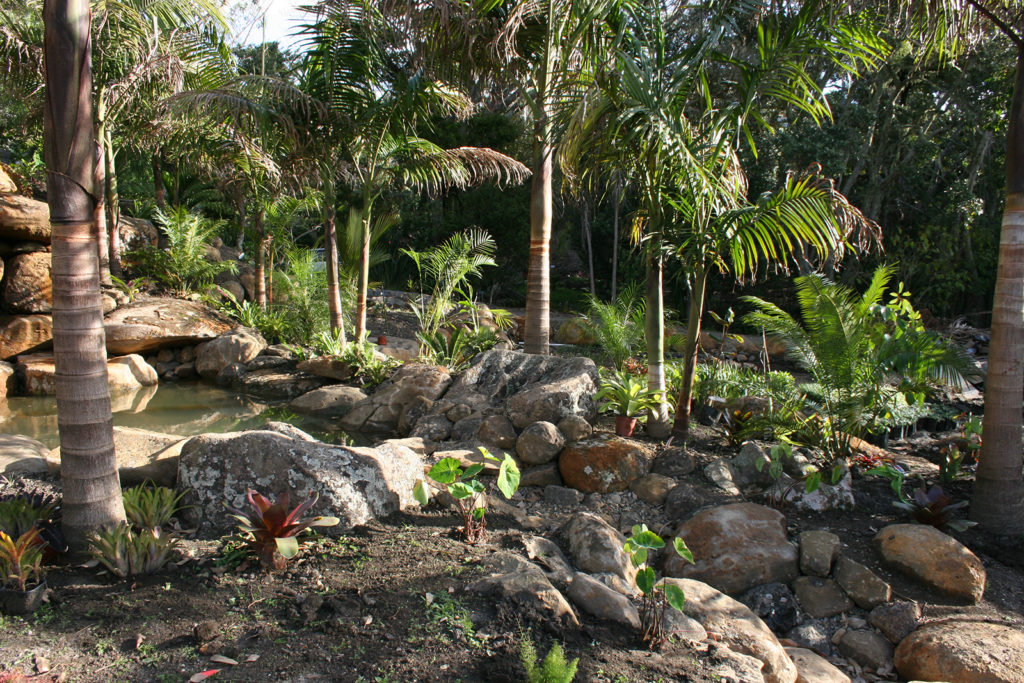 early stages of new garden at sanctuary in the cove