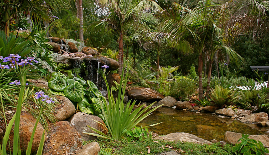 waterfall and planting design by hawthorn landscapes