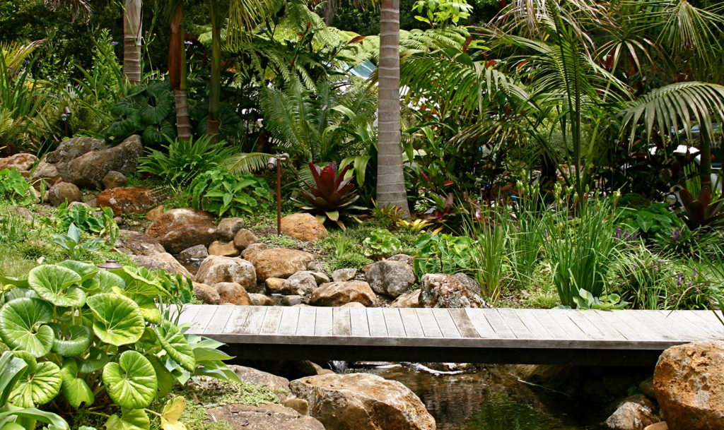 wooden walkway amongst subtropical garden design by hawthorn landscapes